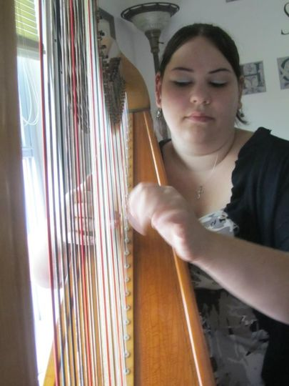 harp pic