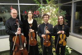 Heritage Hill String Quartet