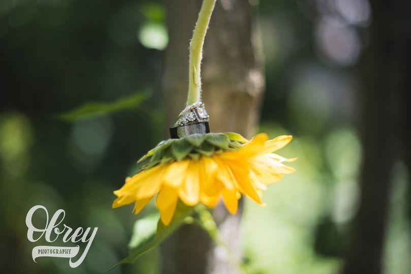 Joscelyn obrey photography