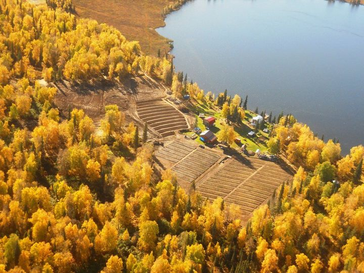 EagleSong Farm in fall colors on the shore of Trail Lake, Alaska.  Accessible only by plane our...
