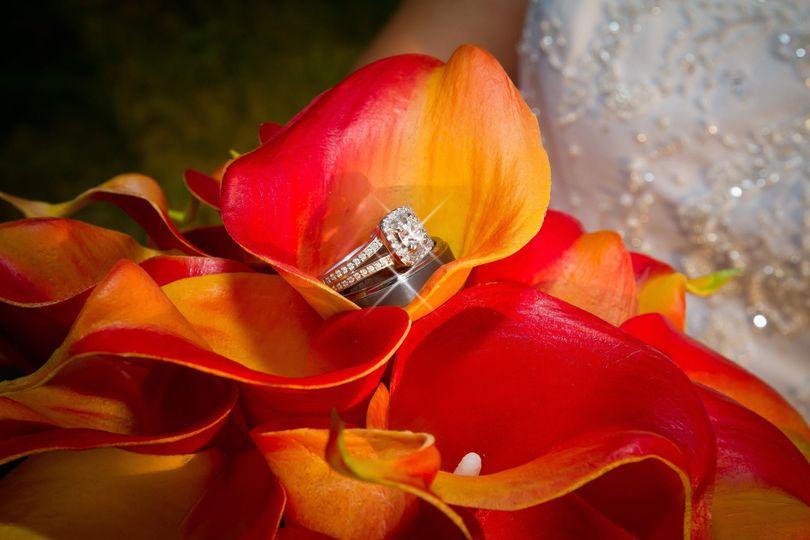 1a421af2f96a03f6 1422375974346 weddingwire 9