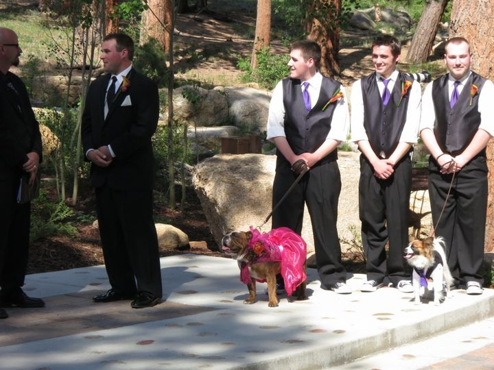 A Sharp Dj Service at the Della Terra with the family dogs involved in the ceremony!
