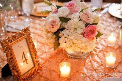 Tmx 1312903824683 0449 Tampa, FL wedding rental