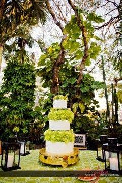 Tmx 1370649142730 Image Tampa, FL wedding rental