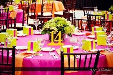 Tmx 1370649231018 Image 3 Tampa, FL wedding rental