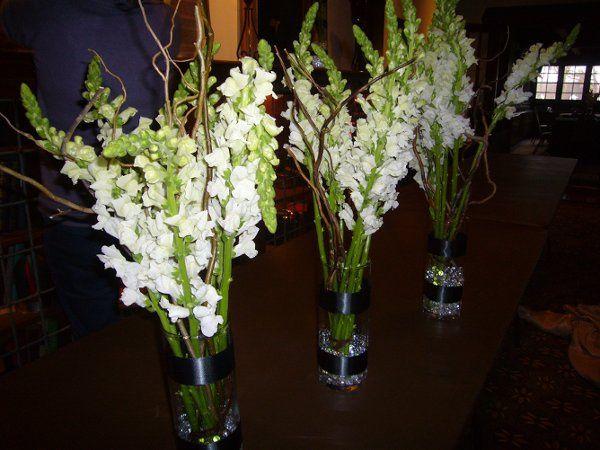 Chicago COLOR Floral Design