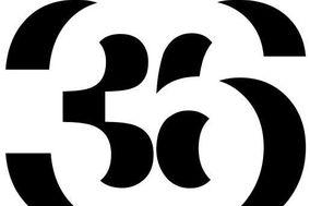 Doble 36