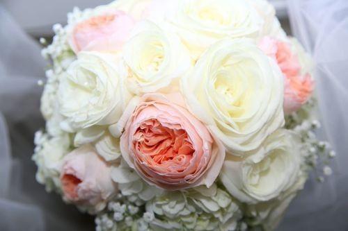 Tmx 1480272533085 20 Naples, FL wedding planner
