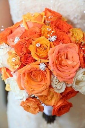 Tmx 1480272645574 1013louisvenne Naples, FL wedding planner