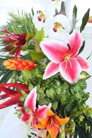 Tmx 1480272673304 1500louisvenne Naples, FL wedding planner