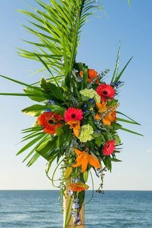 Tmx 1480272856299 Karensalefavorites 0018 Naples, FL wedding planner
