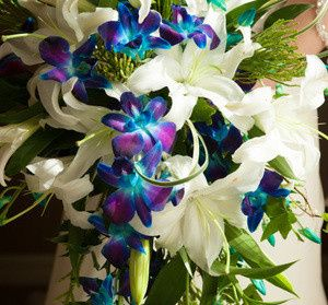 Tmx 1480272901859 W Fl064 565x525 Naples, FL wedding planner