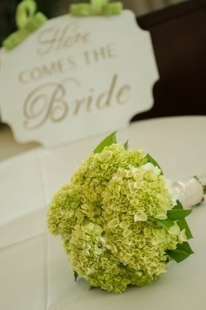 Tmx 1480272907033 W Gdr 004 Naples, FL wedding planner