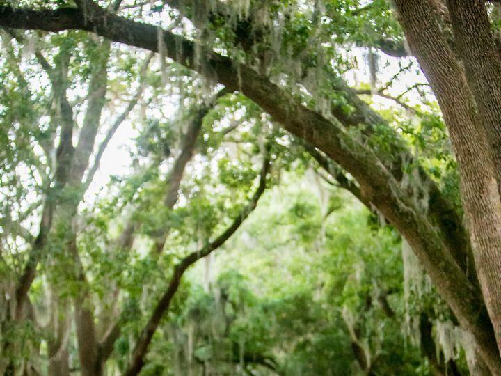 Tmx 1478527549291 Yarrisonwedcc438 Columbia wedding photography