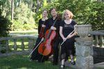 Galliard Trio image