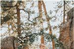 Deer Creek Valley Ranch image