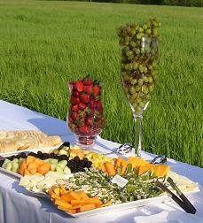 Tmx 1340993742473 Appetizertabledisplay2 Edgerton, KS wedding catering