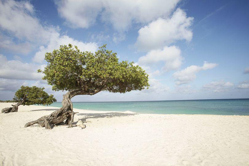 Aruba One Happy Island!
