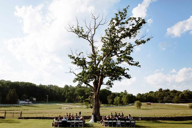 Ceremony by the tree