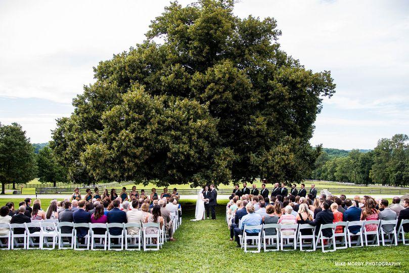 Wedding isle