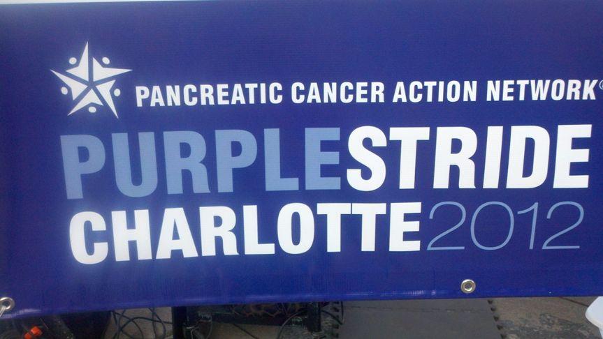 Purple stride charlotte