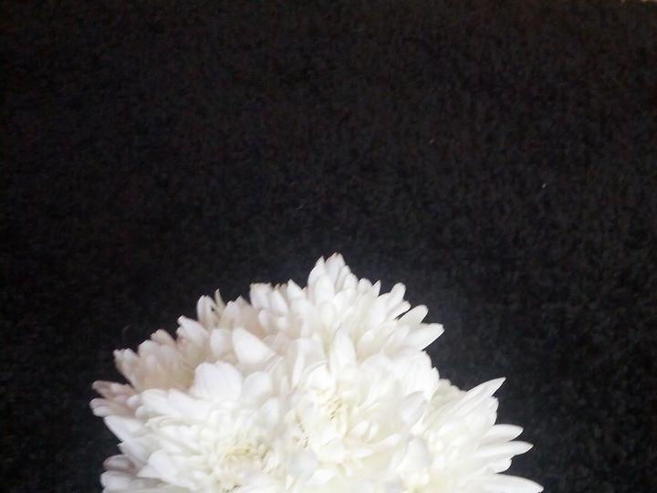 Tmx 1365117606937 Img20130111133757 Oaklyn wedding planner
