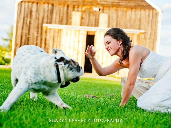 Tmx Kara Sharynpeavey Lores 3317 51 1002276 157715032648018 New Gloucester, ME wedding photography