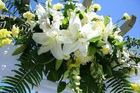 Balenda's Flowers