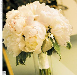 Tmx 1307724766015 Allwhitepeonies White Plains wedding florist