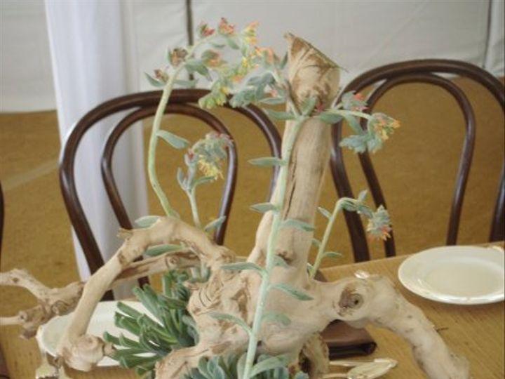 Tmx 1303234616998 06 Southport wedding florist