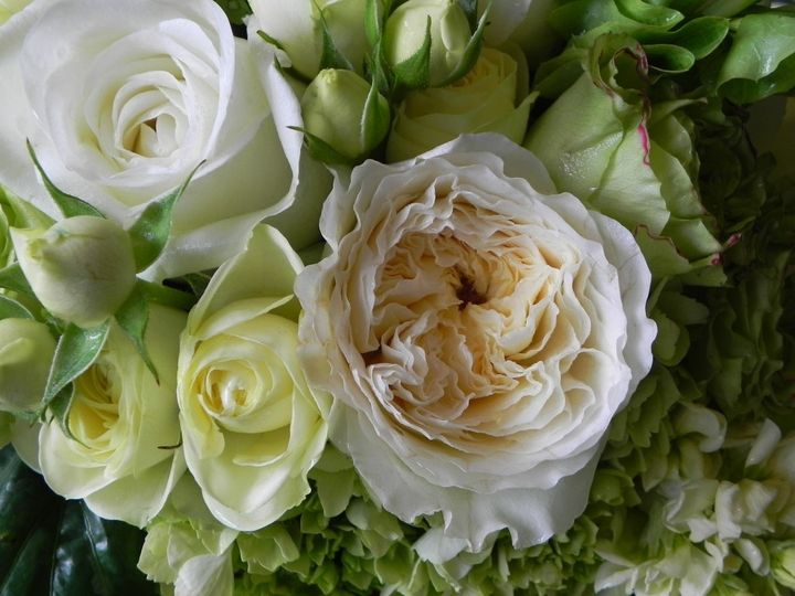 Tmx 1399390715176 Garden Rose Patience Julie Chelsea, MA wedding florist