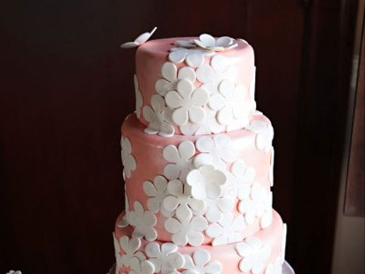 Tmx 1310449661105 Pinkdaisycakephotoshootpic Overland Park wedding cake