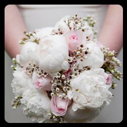 Tmx Wedding Flowers Officiant Vow Renewal 51 905476 1568386044 Wexford, PA wedding officiant