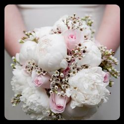 Tmx Wedding Flowers Officiant Vow Renewal 51 905476 158153613957725 Wexford, PA wedding officiant