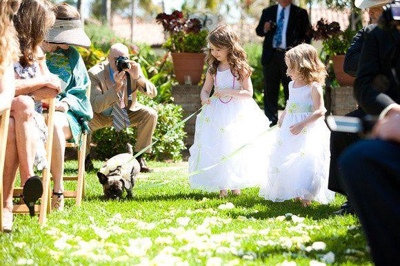 Tmx 1385618671824 P1629967817 O477494346  Richland wedding planner