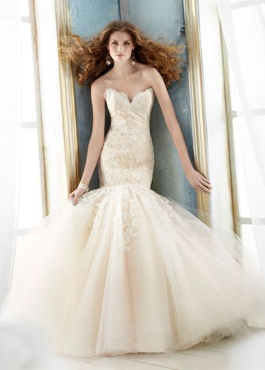 Blush lace mermaid with deep sweetheart neckline from Jim Hjelm