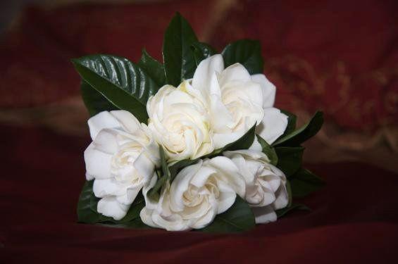 hawaii gardenia bouquet