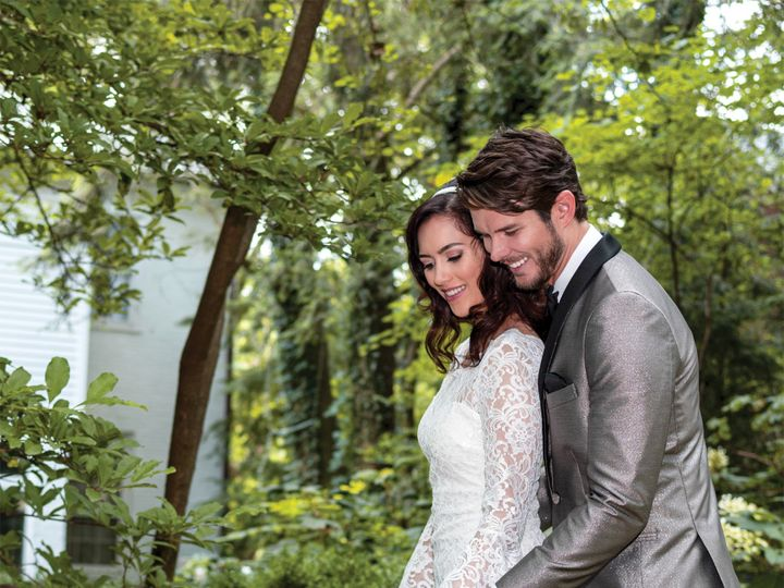 Tmx Starlight Lame Stone Wedding Cake Sq 51 646676 157927711691675 Waterloo wedding dress
