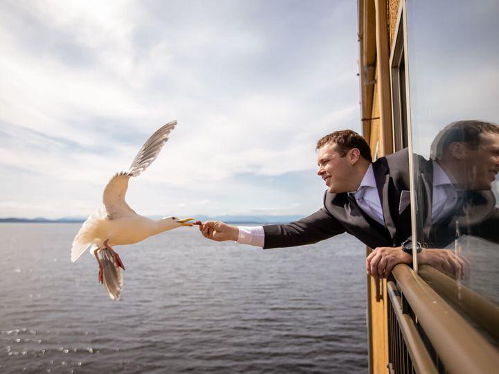 Tmx Feeding Seagull Pale Quail 51 107676 160986691392631 Seattle, WA wedding venue