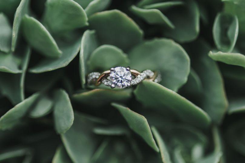Bride's ring in succulent