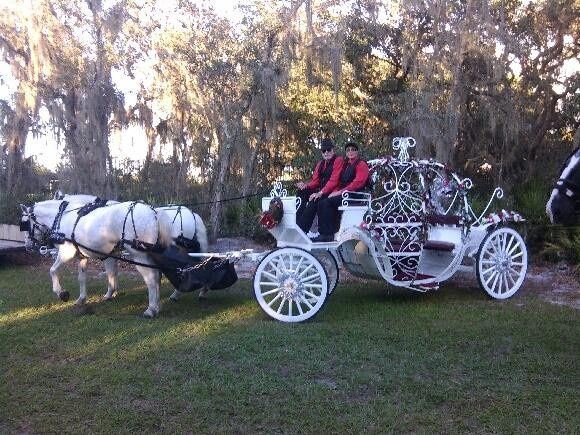 Tmx 1456863112351 Cinderella Carriage Saint Cloud wedding transportation