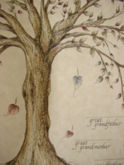 Family Tree, close up