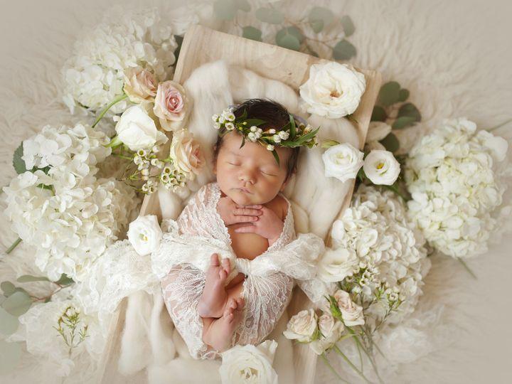 Tmx 1482258183581 Nsp7346 Tampa wedding florist