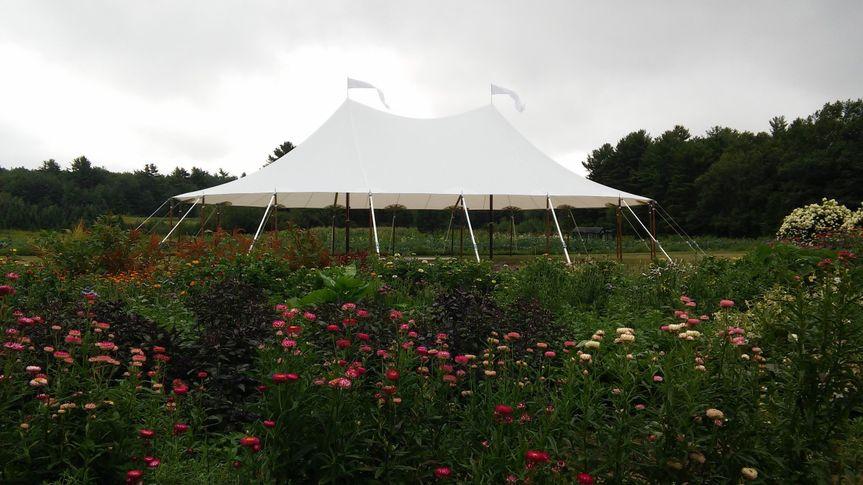 44x63 Tidewater Pole Tent