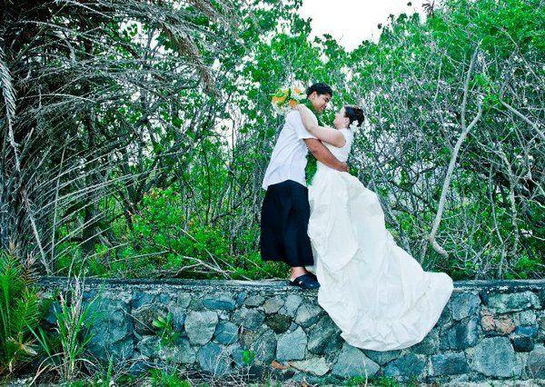 Tmx 1323342681024 Husbandandionthewall Hudson wedding dress