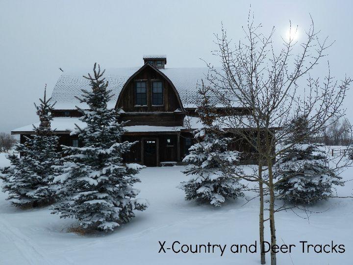 w x country deer tracks
