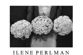Ilene Perlman Photography