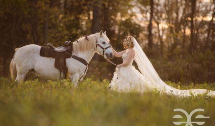 Elizabeth Snyder Photography