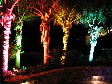 Landscape lighting at a wedding in Cabo