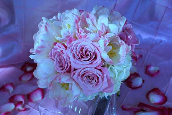SunKissed Flowers